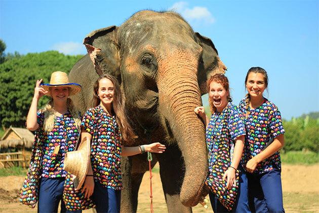 Elephant Santuary in Thailand