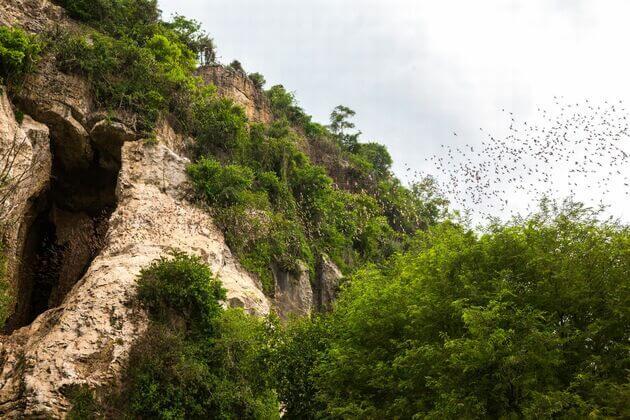 Mekong Eyes Explorer River Cruise-Battambang Bat Caves