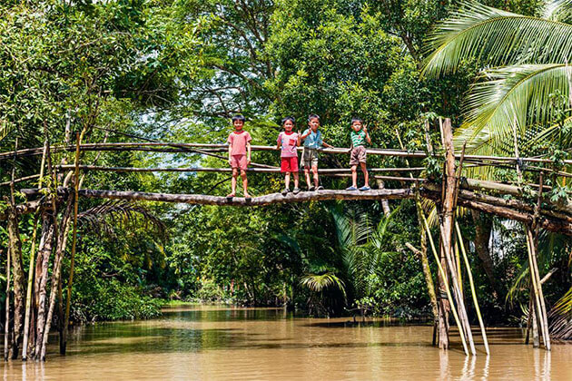 monkey bridge in Vietnam Mekong River Cruise Tours